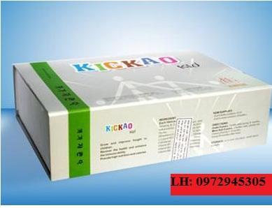 Phân phối thuốc Kickao kid